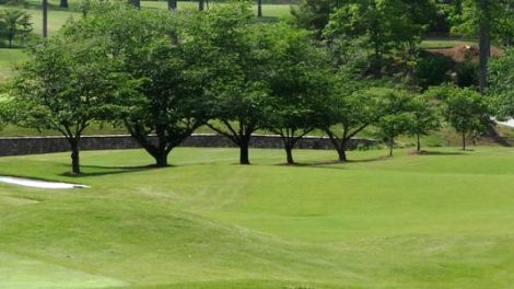 Nambour Golf Club