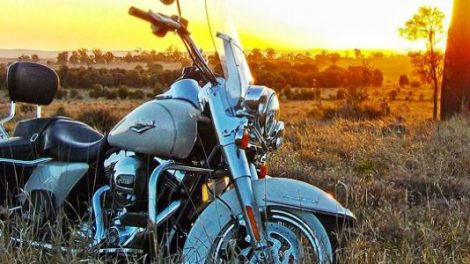 Sunshine Coast Harley Tours