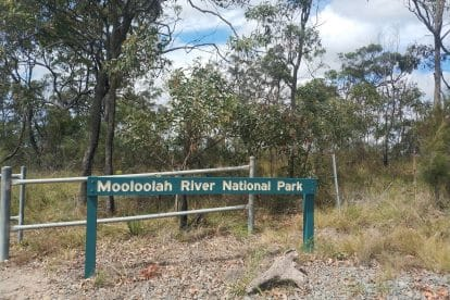Mooloolah River National Park-12