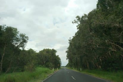Beerwah State Forest-01