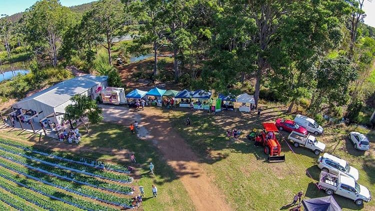 Noosa Food and Wine Festival 7
